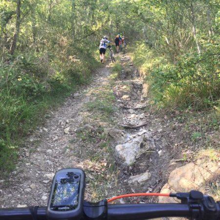Chianti Trail (5)