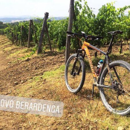 Chianti Trail (10)
