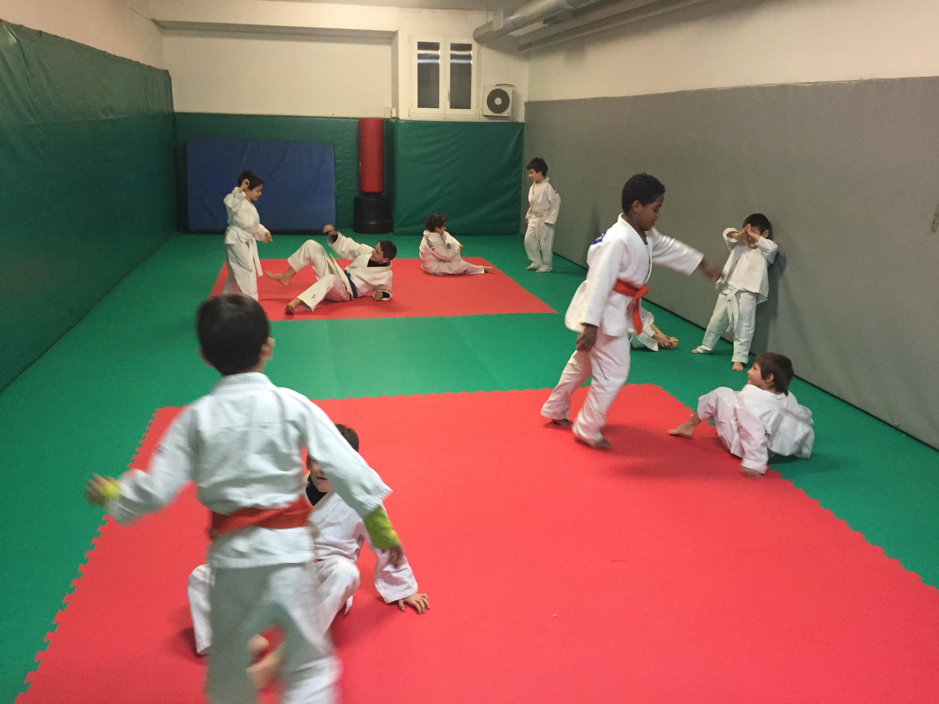 gioca judo